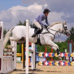 Showjumping in Bournemouth
