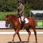 Dressage Events in Bournemouth