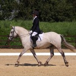 Unaffiliated Dressage Events in Bournemouth