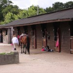 Stables and DIY Livery in Bournemouth